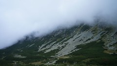 In Valea Rea (Sorin Sfrlogea) Tags: retezat montaniard
