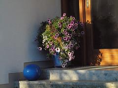 Oktobermorgen (bratispixl) Tags: germany licht sony oberbayern schatten farben morgenstunde herbststimmung chiemgau lichtwechsel traunreut stadtrundweg bratispixl haustrdeko belichtungsproben