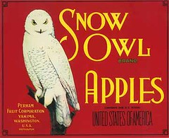 "Snow Owl Red • <a style=""font-size:0.8em;"" href=""http://www.flickr.com/photos/136320455@N08/21283681900/"" target=""_blank"">View on Flickr</a>"