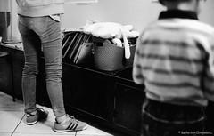 F20150222_CV-Bessaflex(Chrome)+AGFA-Retro400S_N_022-Y48 (Leche con Compasio) Tags: blackandwhite bw film monochrome rollei analog iso400 snapshot n taiwan nb negative chrome m42 ddr sw taipei 台灣 agfa 黑白 cosinavoigtlander 台北市 隨拍 2015 czj 底片 filteryellow blackwhitephotos carlzeissjenna pancolar50mmf18 voigtlanderbessaflex 巷弄風情 y482 agfaretro400s bwfp 李思儀中醫診所 documentingviewsinanalley inalittleclinic pancolarelectric1850mc