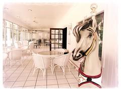 Nope, no one named Ed here mister! (milomingo) Tags: horse white wisconsin room indoor resort patio commercial destination dining wicker paintedhorse parlor carouselhorse pembine fourseasonsislandresort lilliesicecreamparlor