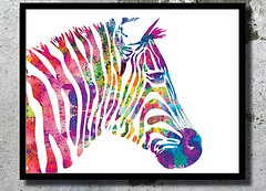 Zebra Watercolor Art Print Zebra painting Home decor Animal Watercolor Zebra poster wall art Nursery Decor Animal Illustration Children room (bogiartprint) Tags: watercolor zebra prints giclee animalnursery animalillustration nurseryart zebraart zebrapainting animalwatercolor artandcollectibles childrenroomdecor zebraposter zebraillustration zebrawatercolor watercolordecor