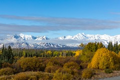 Kluane National Park (SaunTek) Tags: snow fall foliage covered