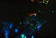 Bahamas 1988 (109) New Providence: Junkanoo (Rüdiger Stehn) Tags: dia analogfilm scan 1980s slide 1980er diapositivfilm kleinbild kbfilm analog 35mm canoscan8800f 1988 contax137md bahamas nassau insel newprovidence amerika westindischeinseln karibik mittelamerika junkanoo fest nacht nachtaufnahme menschen leute junkanooparade kostüme maske festival thebahamas nordamerika rüdigerstehn