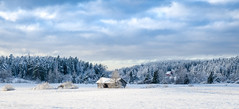 Winterscape (arska-76) Tags: winter panorama snow cold ice finland landscape nikon outdoor d7000
