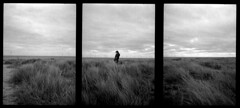 Great Yarmouth - 2015 (Andrew Bartram (WarboysSnapper)) Tags: film 35mm triptych dunes olympus analogue halfframe greatyarmouth ilford penee id1111 believeinfilm