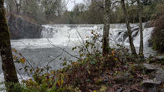 2015-111525 (jjdun7) Tags: water oregon forest landscape waterfall scottsmills