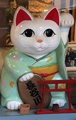 Maneki-neko (Toni Kaarttinen) Tags: japan  japonia    jap japonsko jaapan  japani japon xapn    japn jepang an tseapin giappone  japna japonija  japo  japonska japn hapon  japonya nht bn japanese narita naritacity naritatown manekineko cat goodfortune fortune