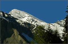 In the mountains... (Everest Daniel) Tags: swissalps switzerland mountains snow blue sky summer