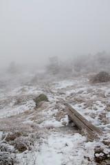 namnlost-0325 (PeterSjoquist) Tags: blefjell norway climbing mountain fog dramatic magic