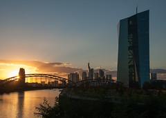 Mainufer im Abendlicht-bw_20160929_6945.jpg (Barbara Walzer) Tags: 290916 mainufer sonnenuntergang licht abendstimmung ezb