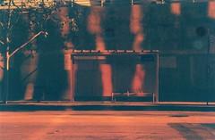 Untitled (Melissa Nunn) Tags: 35mm film lomography la california