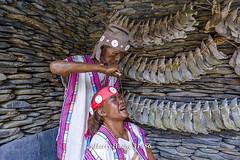 Harry_31386,,,,,,,,,,,,Formosan Aboriginal Culture Village,Nantou (HarryTaiwan) Tags:            formosanaboriginalculturevillage nantou     harryhuang   taiwan nikon d800 hgf78354ms35hinetnet adobergb