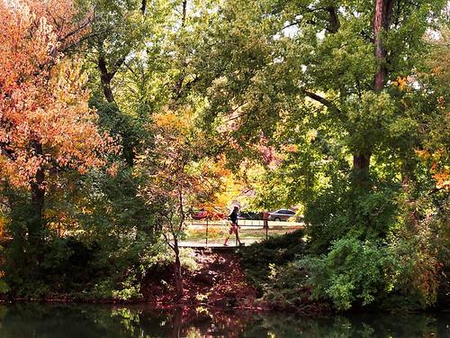 Photo - Samuel Forsyth- Varsity Pond