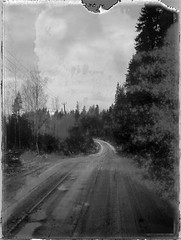 Forest road (Maija Karisma) Tags: polaroid littlebitbetterscan pola instant polaroid100landcamera nature 665 peelapart expiredfilm negative