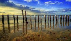 Sand Mirror (brian.m.denton) Tags: seascape westwittering easthead breakwater groyne seadefence westsussex england sand beach reflections briandenton timecapturer sonya850dslr greatbritain unitedkingdom wwwtimecapturercom sunset