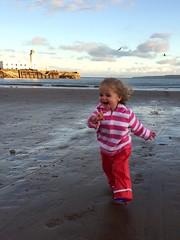 Scarborough (steve.lettin) Tags: baywatch maisie cold seagulls autumn northyorkshire lighthouse sea sand beachbabe beach scarbados scarborough