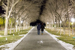 IMG_2616 (Granmuc) Tags: baikonur cosmonaut alley trees