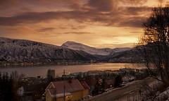 26 (Sergio Eschini) Tags: tromso viaggio travel norvegia normay snow december inverno winter crepuscolo natura landscape cielo sky sunset tramonto citta city mare fiordo fiord