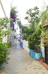 Maroc (daoud1412) Tags: asilah