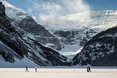 Skiing on Lake Louise (local37) Tags: lakelouise winter skiing snow frozen warmforjanuary