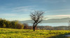 Panorama sul lago di Viverone (rasocarlo66) Tags: cellasanmichele abbaziabenedettina abbazia canavese viafrancigena francigena viverone