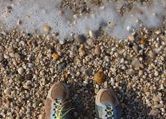 dirty shoes (jennacunniff) Tags: caumsett state park long island ny lloyd harbor new york li adventurer adventure dirty shoes shoe needs cleaning water clean rocks beach