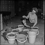 PEM-STO-00255 Bøtter med penger under Sparebankuka i 1968 thumbnail