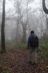 _IMG1989 (YASSAAN) Tags:     pentax k1 japan mountain climbing fa31