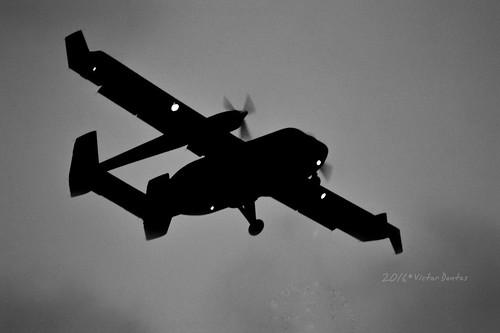 IAI 202 Arava (La Patilla Voladora)
