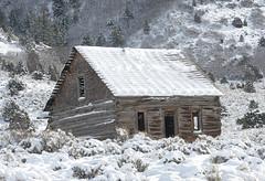 Snow Covered Cabin (tomkellyphoto) Tags: rifle colorado snow winter barn cabin desolate usa