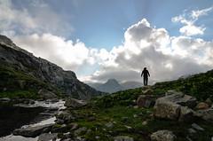 तुम ज़माने की बात करते हो मेरा मुझसे भी फ़ासला है बहुत - आलोक_मिश्रा (parmeetkohli) Tags: life flowers blue friends sunset wild vacation sky mountains green trek reflections climb rainbow wind walk lakes meadows halo alpine kashmir trout himalayas