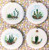 "Succulent Mini Hoops • <a style=""font-size:0.8em;"" href=""http://www.flickr.com/photos/29905958@N04/21026200168/"" target=""_blank"">View on Flickr</a>"