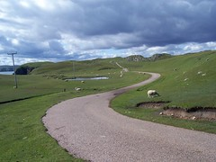 Road less travelled, Strathy Point, Sutherland, July  2015 (allanmaciver) Tags: road travel clouds private point scotland quiet sheep dramatic remote farmer sutherland less strathy allanmaciver countruyside