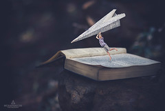 Flying away (BronwynKatzke) Tags: boy nature composite photoshop vintage outdoors book fly flying child pages 85mm naturallight adventure matte paperplane anitque