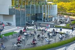 Tokyo Midtown Garden (jimmyxpark) Tags: park japan garden 50mm tokyo cafe terrace outdoor midtown patio fujifilm roppongi tcl x100s