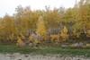 RU2036 伊爾庫次克州 (S.K. LO) Tags: russia easternsiberia irkutskregion