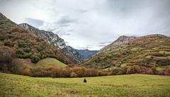 Otoo / Autumn (bienvefernandez) Tags: autumn panorama espaa spain asturias panoramica otoo bestcapturesaoi