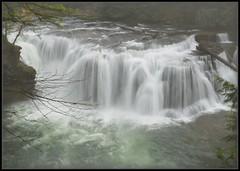 Lower Lewis Falls Autumn (Ernie Misner) Tags: lowerlewisfalls washington cougarwashington cougar erniemisner nikon d800 nik capturenx2 cnx2 waterfall falls f8andbeatthefalls