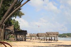 AJY_2946 (arika.otomamay) Tags: beach srilanka trincomalee