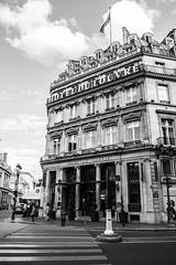 Hotel du Louvre (Kevin Kistermann) Tags: street white black paris france art canon hotel frankreich louvre strasse zebrastreifen 1740mm schwarz weis