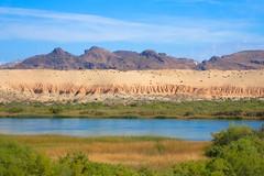 PA194490.jpg (DrPKHouse) Tags: arizona unitedstates loco lakehavasucity chemehuevi lowercolorado