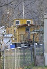 Betsy Layne, Kentucky (4 of 4) (Bob McGilvray Jr.) Tags: railroad yellow yard train private kentucky ky steel tracks caboose cupola co chessie chessiesystem chesapeakeohio betsylayne