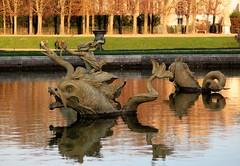 Winter walk in the park of Versailles castle (Sokleine) Tags: park winter sculpture fish france reflection castle pond hiver versailles poisson fontaine iledefrance chteau parc reflets bassin yvelines chateaudeversailles frenchheritage