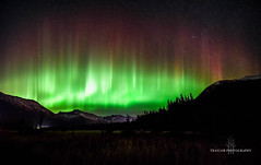 Girdwood, Ak (Traylor Photography) Tags: grass night northernlights landscape travelphotography nature mountains alyeska panorama snow solarstorm auroraborealis colors girdwood sewardhighway alaska anchorage tall unitedstates us
