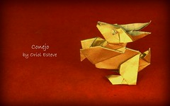 Conejo (Coney) designed by Oriol Esteve (Thomas Krapf Origami) Tags: rabbit conejo coney hase origami paper papier papierfalten paperfolding oriolesteve oriol esteve tricksterorigamist trickster origamist kaninchen