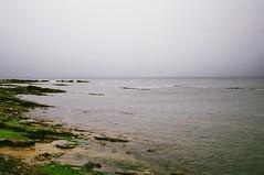 49740028 (edendenden13) Tags: beach scotland film
