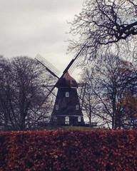 Toh, un mulino  #windmill #copenhagen #kbenhavn #denmark #kastellet #park #trees #fall #autumn (.taz.) Tags: instagramapp square squareformat iphoneography uploaded:by=instagram ginza copenhagen denmark kastellet winter trees windmill park foliage