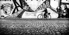 Passing through town. (Mister G.C.) Tags: blackandwhite bw image streetshot streetphotography photograph monochrome urban town city man male guy bike bicycle cycalist eyecontact lowpov lowpointofview streetart wall gritty cobblesones zonefocus zonefocusing snapfocus ricoh ricohgr pointshoot mistergc schwarzweiss strassenfotografie niedersachsen lowersaxony deutschland europe