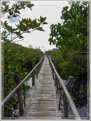 DSCN0201 (Ove Cervin) Tags: 2016 aw130 anda bohol coolpix filippinerna flickr lamanokcaves nikon philippines travel public